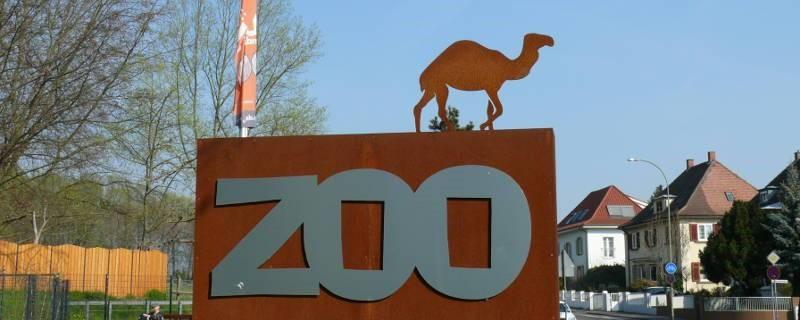 Spontaner Besuch im Zoo Landau